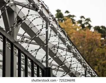 Barbed wire, barbed wire on the fence. Egoz's barbed wire