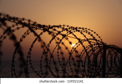 Barbed wire on sunset sky background