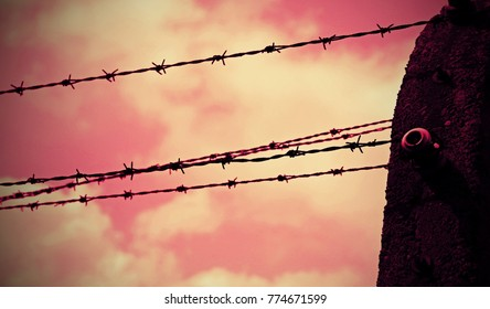 barbed wire in the refugee camp with red background effect