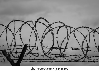 Barbed wire - restricted area. Black and white photo