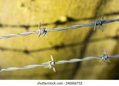 Barbed wire, with shadow, on blurred background.