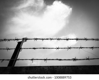 Barbed  Wire sky background Black and White picture