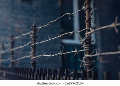 barbed wire stretched in 3 layers on the fence
