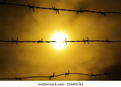 Barbed wire and sunset