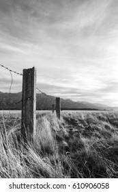 Barbed wired fence on pasture at the sunset