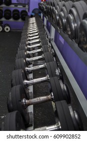 Barbells stacked on  rack