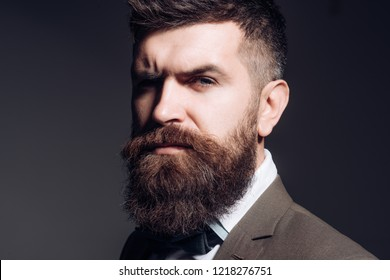 Barber and beauty supply business. Bearded man after barber shop. Man with long beard in business wear. Business as usual. Mens fashion. The fashion business is the opposite to glamorous.