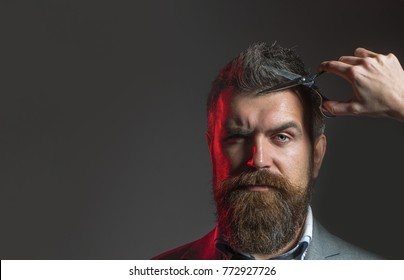 Barber scissors. Bearded man, lush beard, handsome. Hipster in barbershop. Mens haircut in barber shop. Vintage barbershop, shaving. Bearded male, long beard, brutal, caucasian male with moustache.
