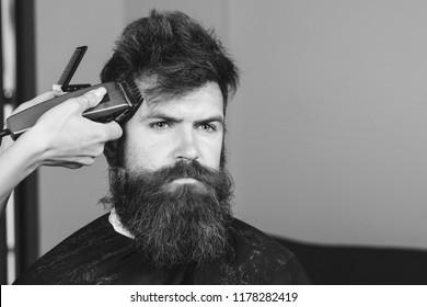 Barber shop. Man in barber's chair, hairdresser styling his hair. Bearded man, bearded male. Portrait of stylish man beard. Barber scissors and straight razor, barber shop. Vintage barbershop, shaving