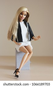 A Barbie  doll with long white hair and in beautiful clothes.