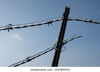 Barbwire with ice over it frozen, sky winter security.
