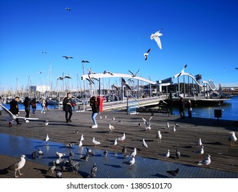 Barcelona, Spain - December 19, 2018: It's just a wooden walkway or bridge at the marina: the Rambla del Mar. The impressive wave-like construction of the bridge makes it a magnet for visitors