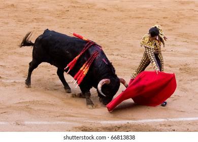 "BARCELONA - JUNE 6: ""Corrida"" (bullfighting) of bulls, typical Spanish tradition where a torero (bullfighter) kills a bull. In the picture, ""Finito de Cordoba"". June 6, 2010 in Barcelona (Spain)."