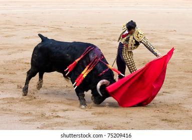 """BARCELONA - JUNE 6: Finito de Cordoba in action during a """"corrida de toros"""", typical Spanish tradition where a """"torero"""" kills a bull. June 6, 2010 in Barcelona (Spain)."""