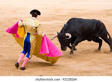 Spanish Bull Images Stock Photos Vectors