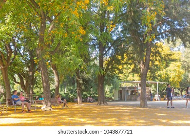 BARCELONA- SET 2: Overview of Citadel park on September 2, 2017 in Barcelona, Spain. The Parc de la Ciutadella is a park on the northeastern edge of Ciutat Vella, Barcelona.