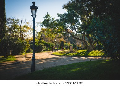 Barcelona, Spain - 24.11.2018: Beautiful day in Ciutadella Park, view of a path with green trees