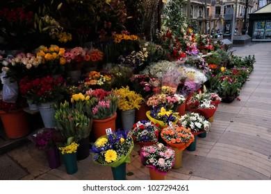 Barcelona, Spain - February, 2018. Flower shop in Ramblas of Barcelona.