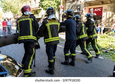 Barcelona, Spain - September 20, 2017: Firemen pulling a fallen tree in middle of the street with people around in Barcelona, Catalonia, Spain