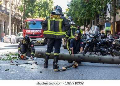 Barcelona, Spain - September 20, 2017: Firemen sawing a fallen tree in the middle of the street to get it out with people around in Barcelona, Catalonia, Spain