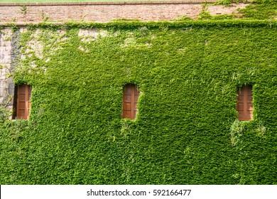 Barcelona: Windows in the castle of Montjuic