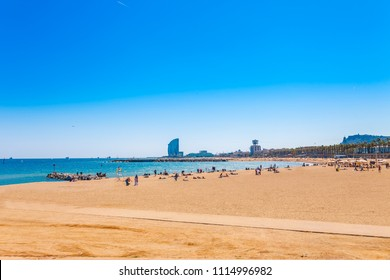 Barceloneta beach in Barcelona. Nice sand beach with palms. Sunny bright day with blue sky. Famous tourist destination in Catalonia, Spain