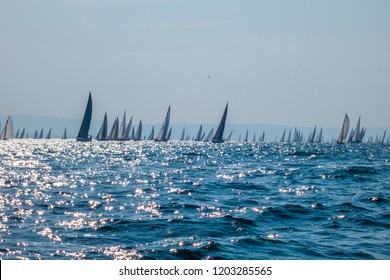 Barcolana, sailing boats in Trieste italy, during the biggest regatta in the word.