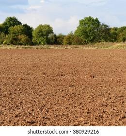 Bare Earth on Plowed Farmland