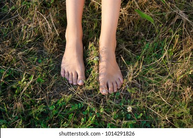 Bare feet of a teenage girl on a summer grass