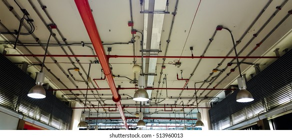 Bare skin ceiling; show lighting design, electrical system and fire protection system.
