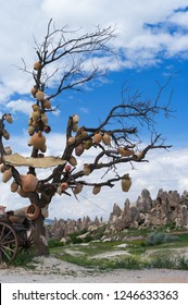 Bare tree with crocks on the branches in beautiful Cappadocia mountains.