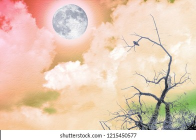 Bare tree with small bird and full moon in cloudy sky. Elements of this image courtesy NASA.