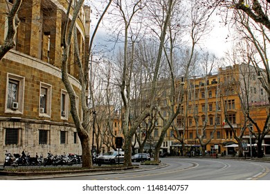 The bare trees and buildings lining Via Vittoria Veneto during winter in Rome, Italy.