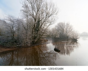 Bare trees covered with frost are reflected in the icy water on a cold and misty winter morning