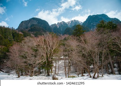 Bare trees in a snowy winter landscape with mountain background - Chubu Sangaku National Park, Nagano Prefecture, Japan.