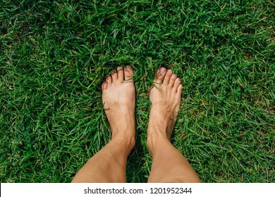 Bare woman's feet on the green grass