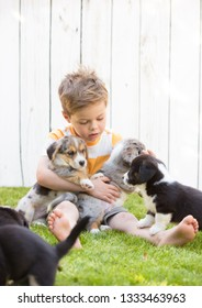 Barefoot five-year-old boy sits on a lawn surrounded by corgi puppies against a white fence. Friendship of animals and children.