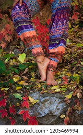 barefoot  woman legs  in yoga  pose in colorful autumn leaves outdoor day shot