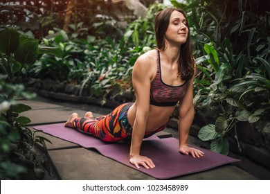 Barefooted beautiful and young female yoga instructor, wearing colorful outfit, performing cobra pose on a purple mat at greenhouse, eyes closed, healthy lifestyle concept.