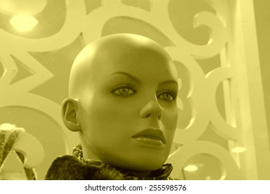 bareheaded model in a shop, closeup of photo