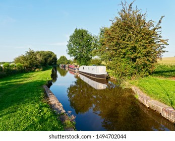 Barges, some brightly painted, moored on the Llangollen section of the Shropshire Union Canal on a hillside near Whitchurch in the late afternoon sunshine