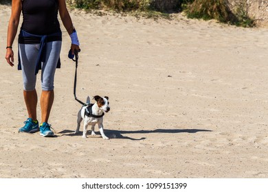 Bari, Italy - 05 01 2018: A woman walks with her dog on the sandy beach on a warm May morning.