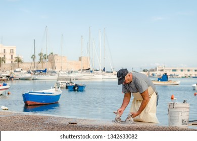 Bari, Puglia, Italy - 07 November, 2018: Fisherman beats fresh octopus on the the pier of St. Nicholas in downtown of Bari, Puglia region, Italy. harbor and boats.