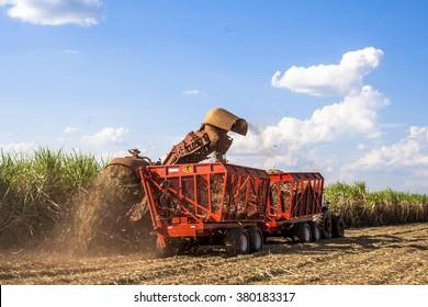 Bariri, Sao Paulo, Brazil, October 10, 2008. Sugar cane harvesting in Brazil