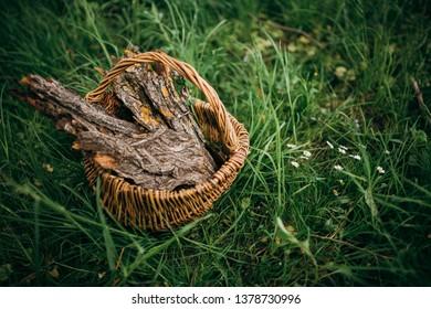 Bark in the basket