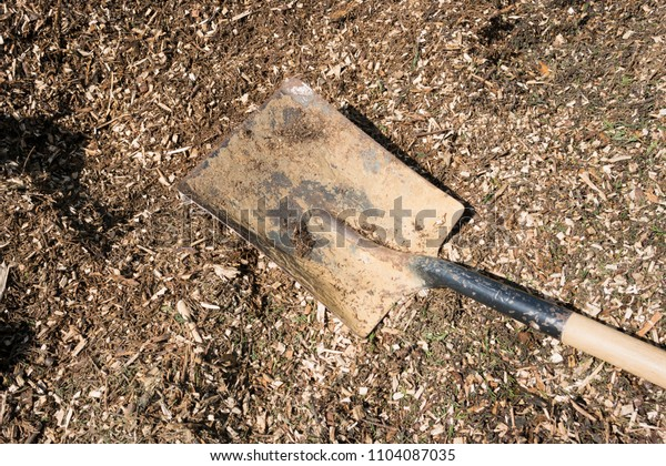 Bark chippings used as a weed suppressant