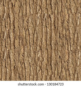 Bark of Elm. Seamless Tileable Texture.