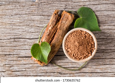 bark and powder of medicinal plant cat's claw, uncaria tomentosa