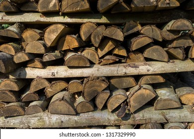 Bark refers to all the tissues outside the vascular cambium and is a nontechnical term. It overlays the wood and consists of the inner bark and the outer bark.