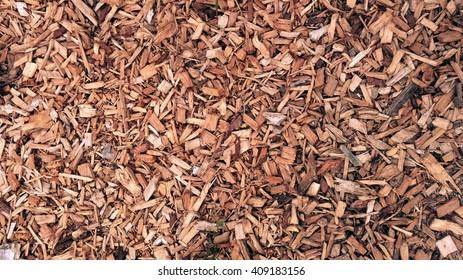 Bark wood chips background.